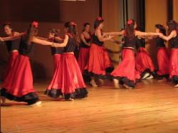 9 май празник на танцав НЧСветлина1941 (25)